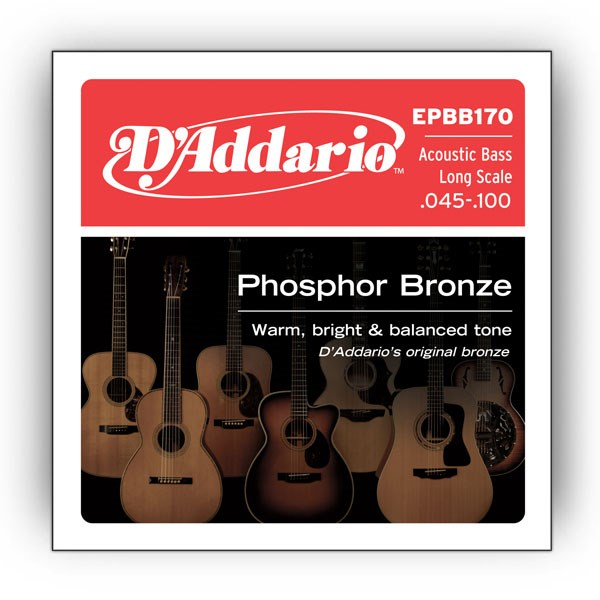 D'Addario EPBB170 Phosphor Bronze Acoustic Bass Strings