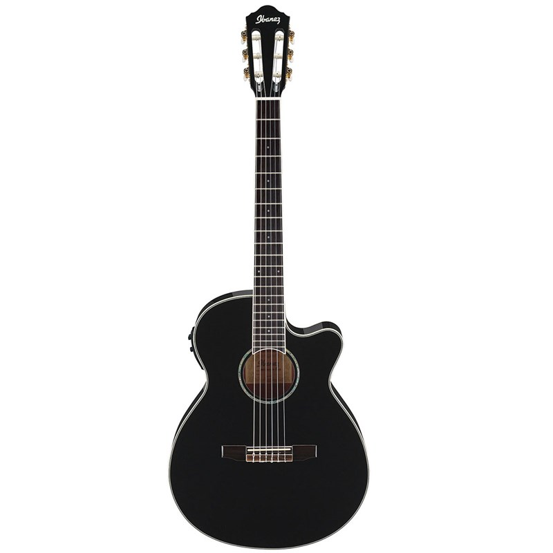 Ibanez AEG10NII Electro-Acoustic Electric Guitar