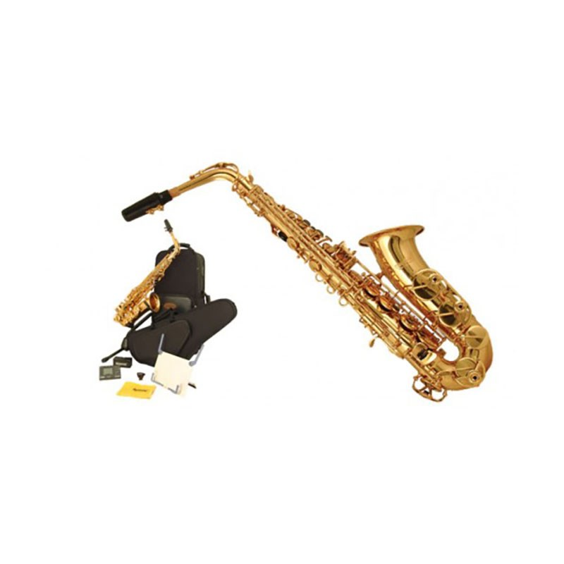 Wisemann WI-0901AS Eb Alto Saxophone Kit