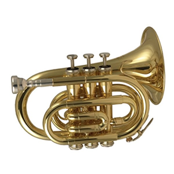 Wisemann DPT-400 Pocket Trumpet Bb